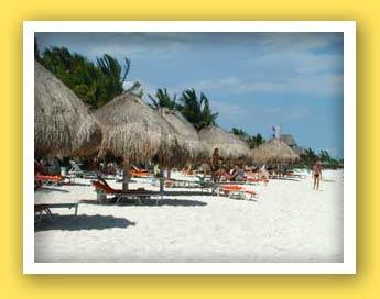 Las Palapas Beach Area